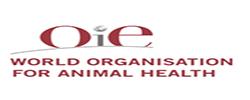 logo_oie-1 Site_Français